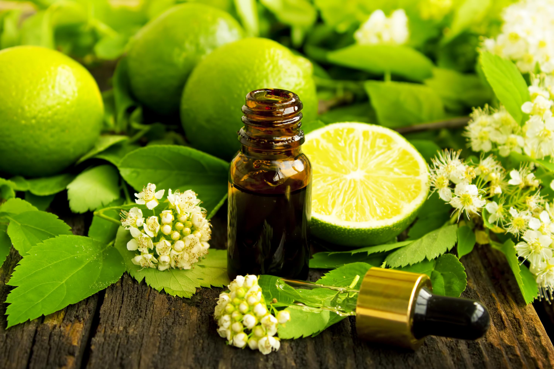 aromaterapia verde