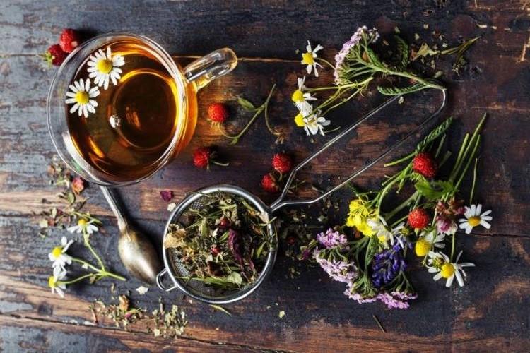 Le 10 piante da tenere sempre in casa inherba il mondo delle piante aromatiche oli - Piante da tenere in casa ...