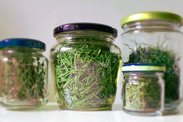 erbe-secche-vasetti-modificata