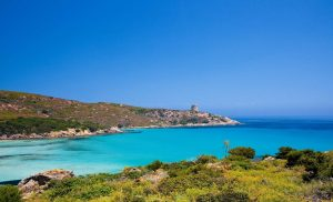 isola Asinara 3