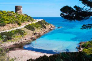 isola Asinara 4