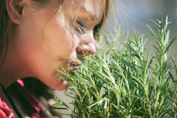 Woman smelling fresh rosemary