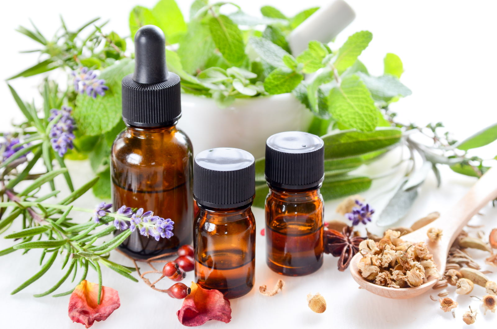 Ilustrasi Obat Herbal. [Foto/istock]